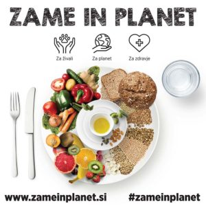 zame-in-planet-plakat
